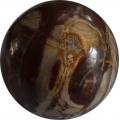 Versteend houten bol